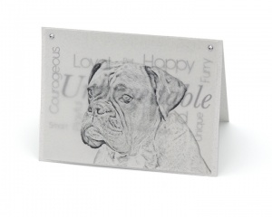 Boxer blank all-occasion pet notecard with envelope