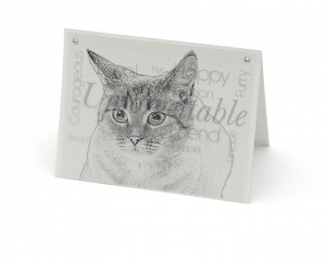 Cat 2 blank all-occasion pet notecard with envelope