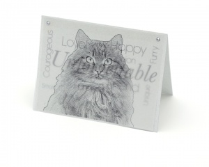 Cat 3 blank all-occasion pet notecard with envelope