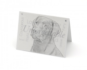 Labrador blank all-occasion pet notecard with envelope