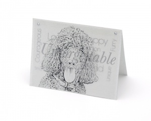 Poodle blank all-occasion pet notecard with envelope