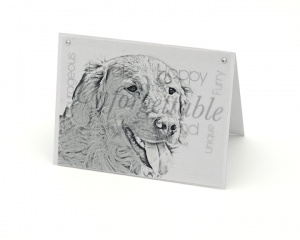 Retriever blank all-occasion pet notecard with envelope