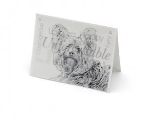 yorkie terrier blank all-occasion pet notecard with envelope